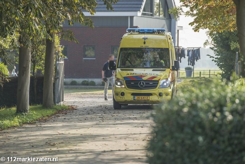 Traumahelikopter ingezet voor val van paard in Halsteren