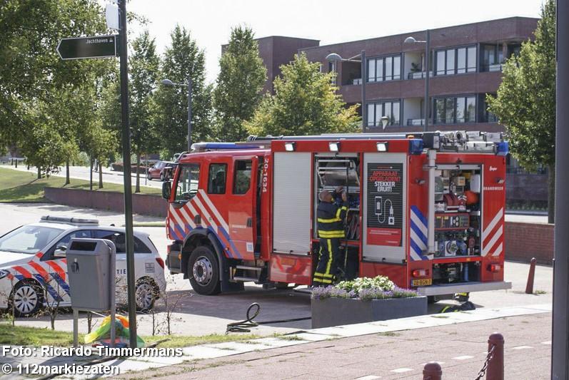 Brand in boom in Steenbergen, brandstichting niet uitgesloten
