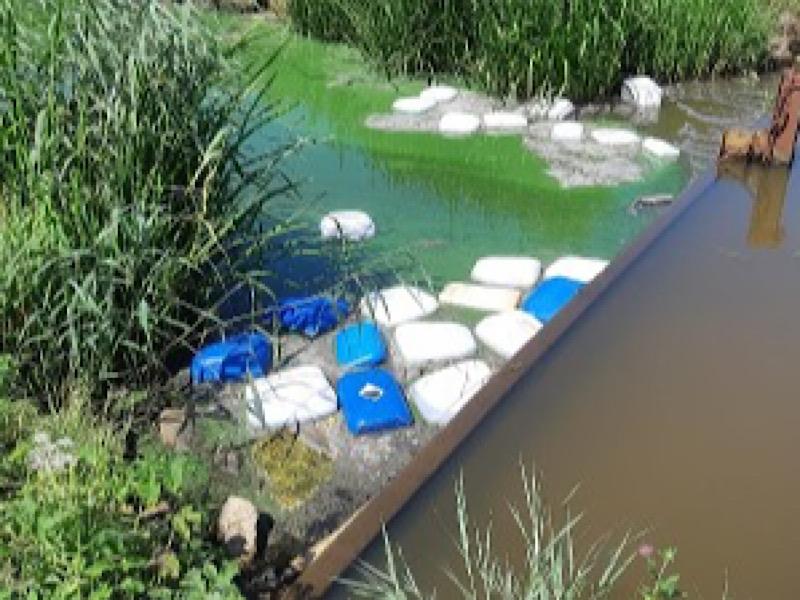 Bergenaar aangehouden voor betrokkenheid bij grote drugsdumping Roosendaal