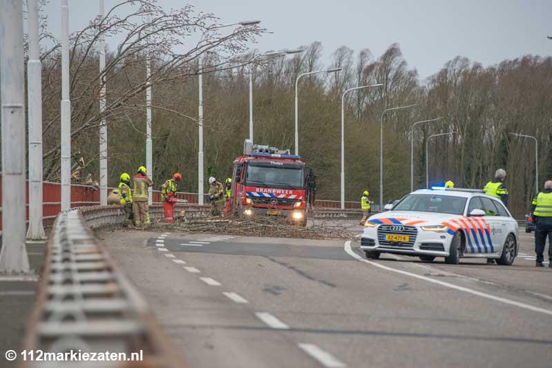 Boom valt tegen Thoolse brug en zorgt voor verkeershinder