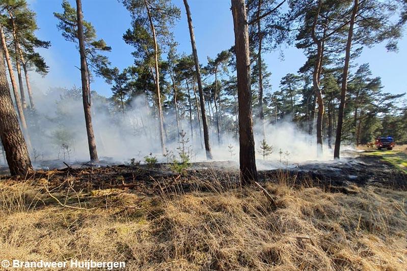 Natuurbrand in bosgebied bij Ossendrecht, brandweer schaalt op naar middelbrand